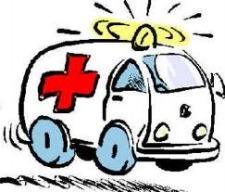 Medical emergency during a Bruckner concert