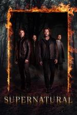 Supernatural (CW Network TV Series)